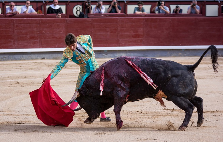 Asociación EL TORO de Madrid0