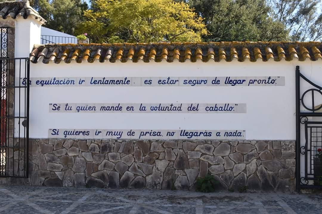 Asociación EL TORO de Madrid69