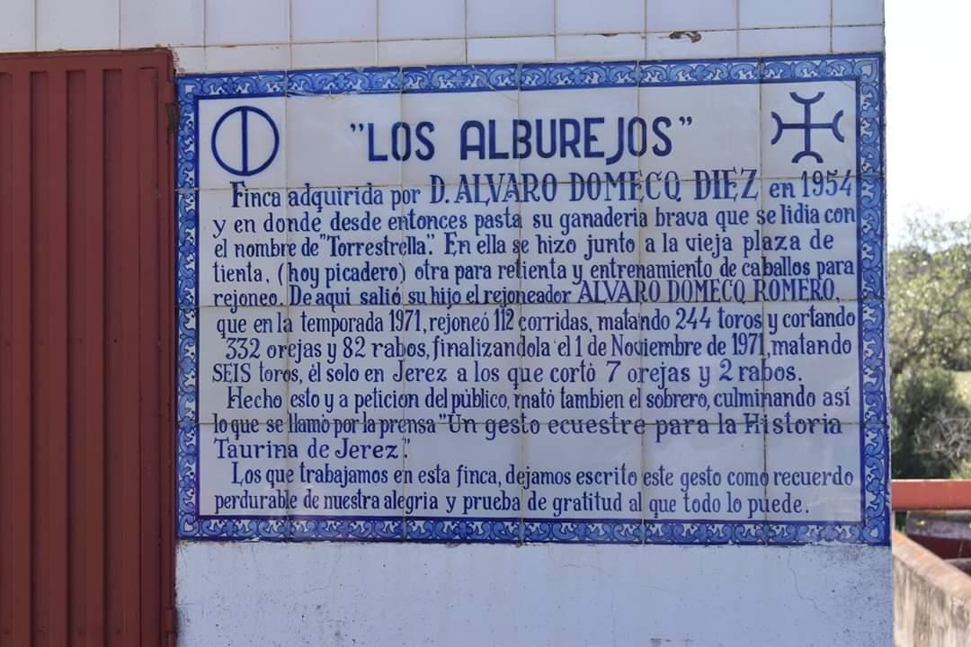 Asociación EL TORO de Madrid73