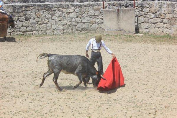 Asociación EL TORO de Madrid22