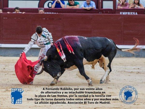 Asociación EL TORO de Madrid29