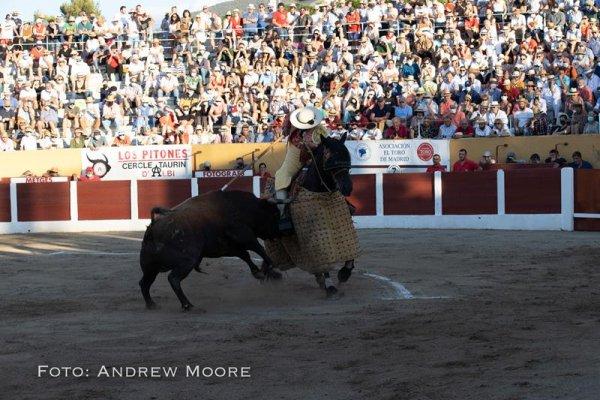 Asociación EL TORO de Madrid17