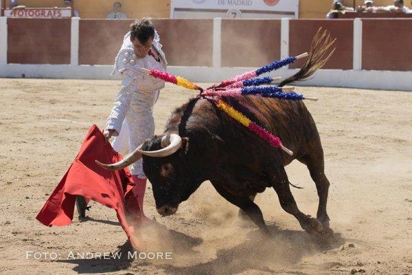 Asociación EL TORO de Madrid7