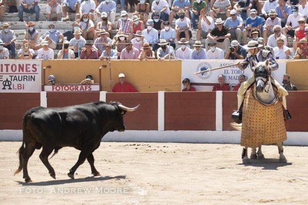 Asociación EL TORO de Madrid16
