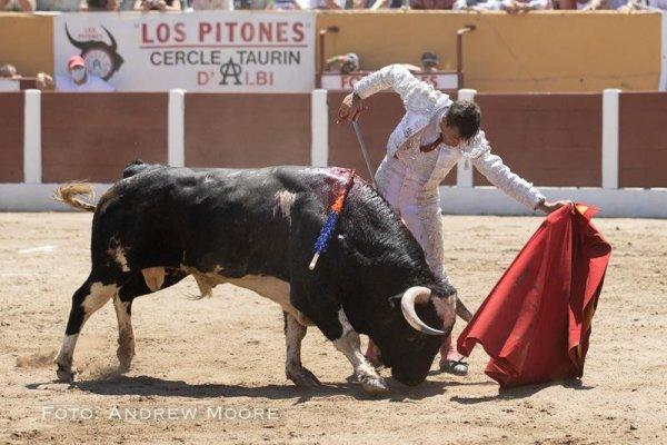 Asociación EL TORO de Madrid21