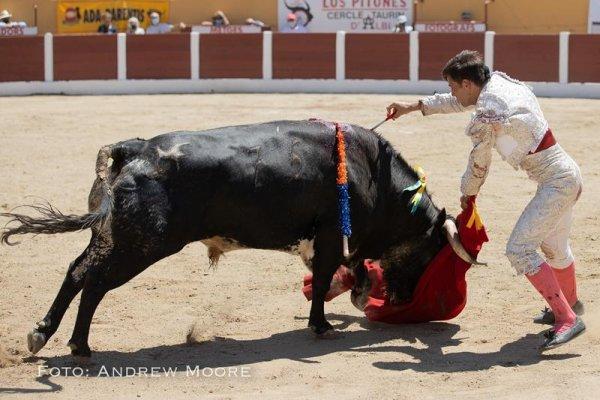 Asociación EL TORO de Madrid27