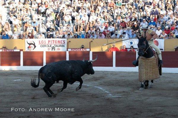 Asociación EL TORO de Madrid23