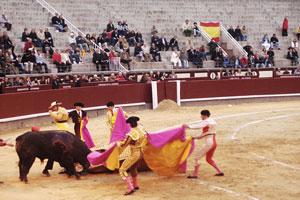 Y El Gallo saltó al ruedo