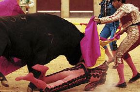 Hoy se lidiaron seis novillos-toros
