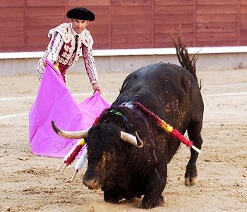 """Un recital para el romancero: """"cada toro tiene su lidia"""""""