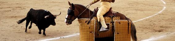 La diferencia entre una paparrucha y una corrida de toros