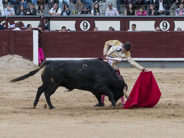 Miguel Ángel Pacheco falló a espadas