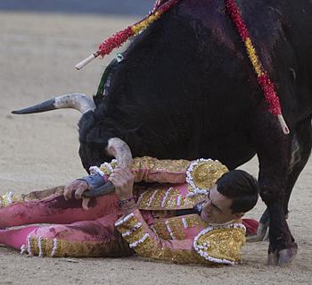 Hoy la verdad en el toreo tiene un nombre y un hombre: Paco Ureña