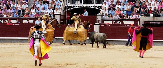 Toros, torero y cuadrillas de saldo