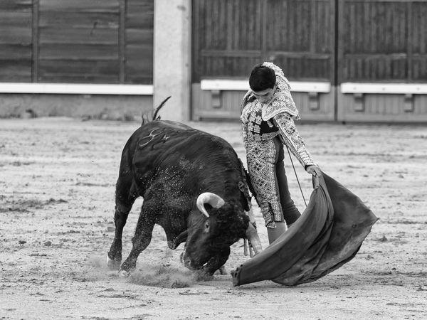 Isaac Fonseca, ganador del certamen Camino hacia Las Ventas