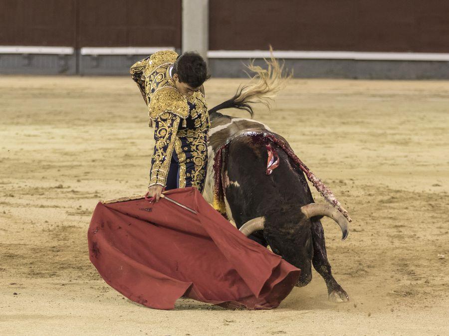 Tomás Rufo se lleva una final sin competencia